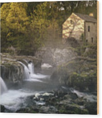 Cenarth Falls At Sunrise Wood Print by Elliott Coleman
