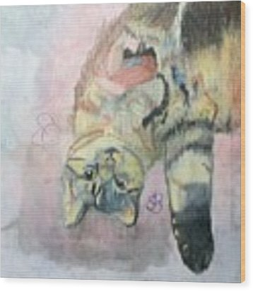 Playful Cat Named Simba Wood Print by AJ Brown