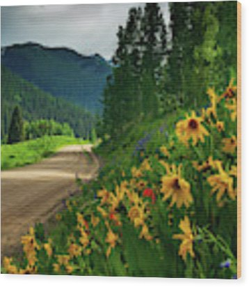 Colorado Wildflowers Wood Print by John De Bord
