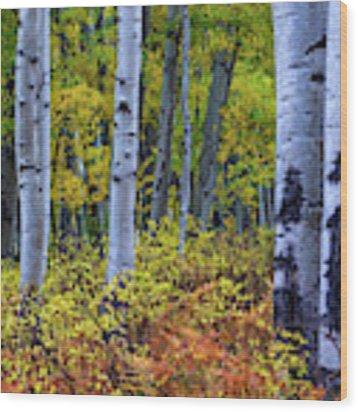 Colors Of October Wood Print by John De Bord
