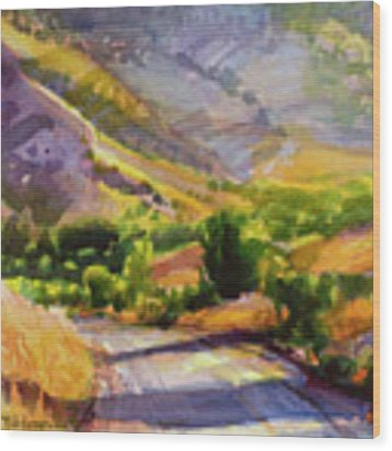 Columbia County Backroads Wood Print by Steve Henderson
