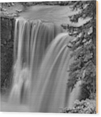 Crescent Falls Wooded Portrait Black And White Wood Print by Adam Jewell