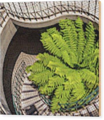 Embarcadero Stairway Wood Print by Kate Brown