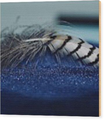 Feather Wood Print by Ann E Robson