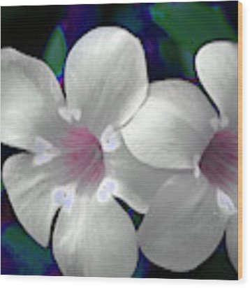 Floral Photo A030119 Wood Print by Mas Art Studio