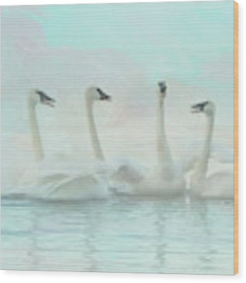 Four Swans Watercolor Group Wood Print by Patti Deters