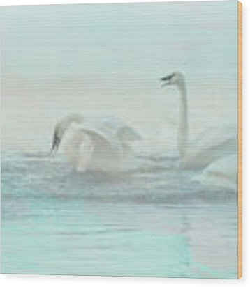 Four Swans Watercolor Group Play Wood Print by Patti Deters