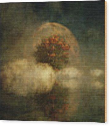 Full Moon Over Misty Water Wood Print by Jan Keteleer