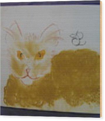 Golden Cat Wood Print by AJ Brown