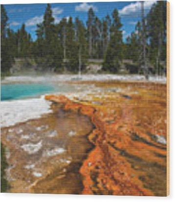 Grand Prismatic Spring Wood Print by Mae Wertz