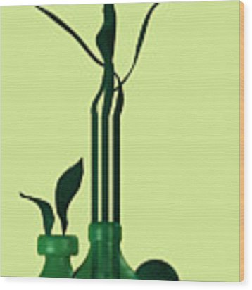 Green Still Life With Cool Elements Wood Print by Alberto RuiZ