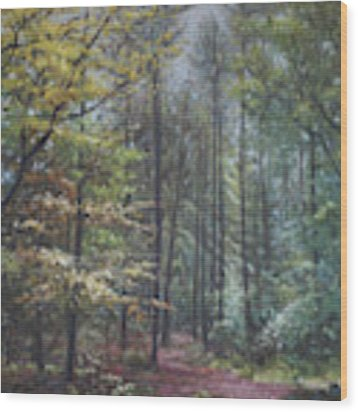 Group Of Trees In The New Forest. Wood Print by Martin Davey