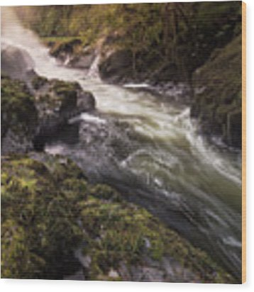 The Teifi At Henllan Falls Wood Print by Elliott Coleman