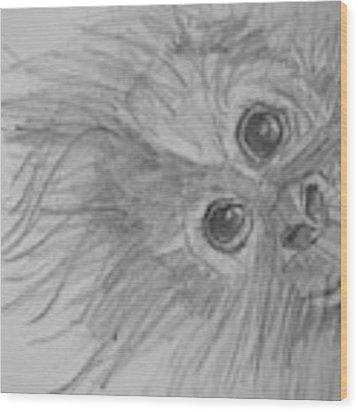 How's It Hangin'? Sketch Wood Print by Jani Freimann