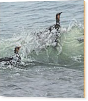 King Penguins Swimming In The Waves Wood Print by Alan M Hunt