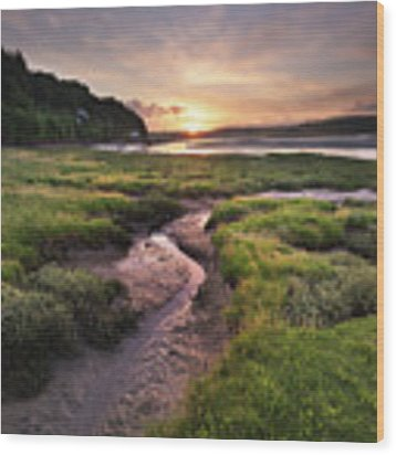 Laugharne Estuary At Sunrise Wood Print by Elliott Coleman