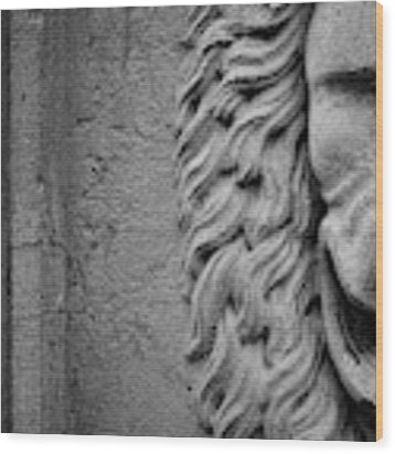 Lion Statue Portrait Wood Print by Nathan Bush