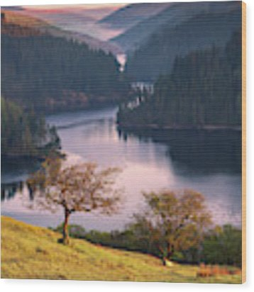 Llyn Brianne Sunrise Wood Print by Elliott Coleman