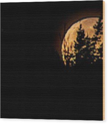 Luna Wood Print by Doug Gibbons