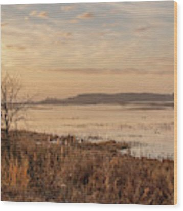 Morning At Boombay Hook Wood Print by Kristia Adams