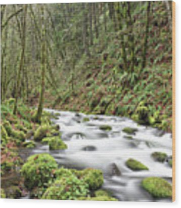 Mossy Stream Wood Print by Nicole Young