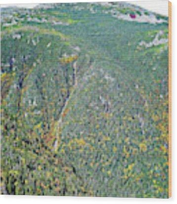Mount Adams New Hampshire Wood Print by Patti Whitten