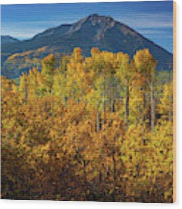 Mountains And Aspen Wood Print by John De Bord