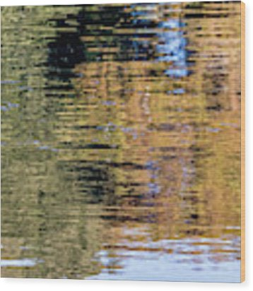 Muted Reflections Wood Print by Kate Brown