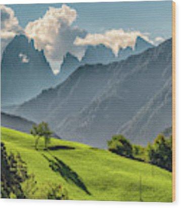 Peak And Meadow Wood Print by James Billings