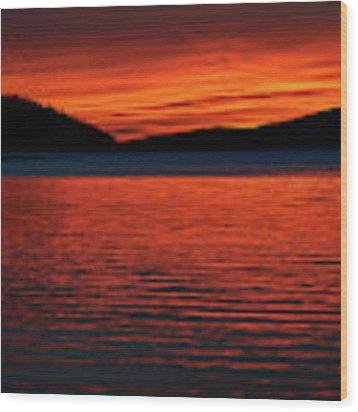 Scarlet Wood Print by Doug Gibbons