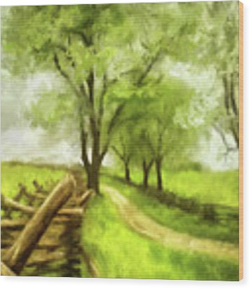 Snake Rail Fences At Antietam Wood Print by Lois Bryan
