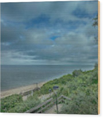 Stairs To The Beach Wood Print by Judy Hall-Folde
