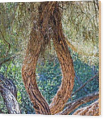 Strange Tree Wood Print by Kate Brown