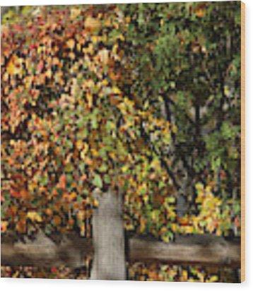 Summers End Wood Print by Ann E Robson