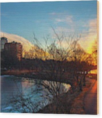 Sunset Over The Charles River Esplanade Wood Print by Joann Vitali