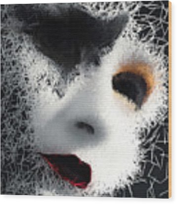 The Phantom Of The Arts Wood Print by ISAW Company