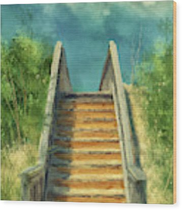 The Sandy Steps Over The Dunes Wood Print by Lois Bryan