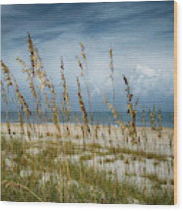 Through The Sea Oats Wood Print by Judy Hall-Folde