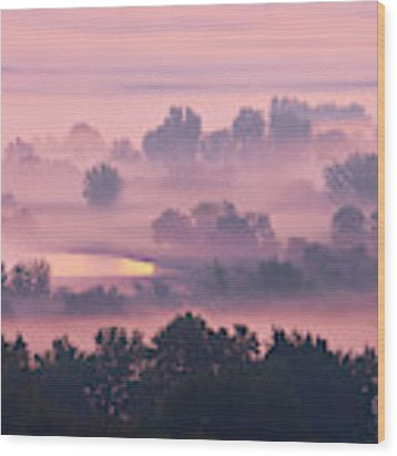 Trees In The Mist Wood Print by Whitney Goodey