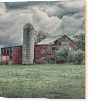 Weathered Worn And Standing Strong Wood Print by Judy Hall-Folde