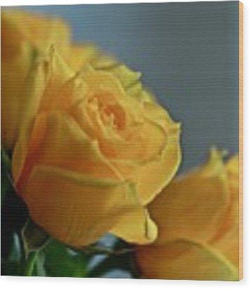 Yellow Roses Wood Print by Ann E Robson