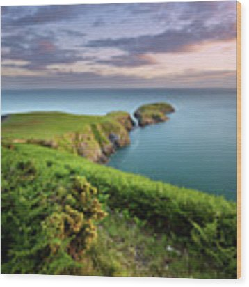 Ynys Lochtyn Summer Sunrise Wood Print by Elliott Coleman