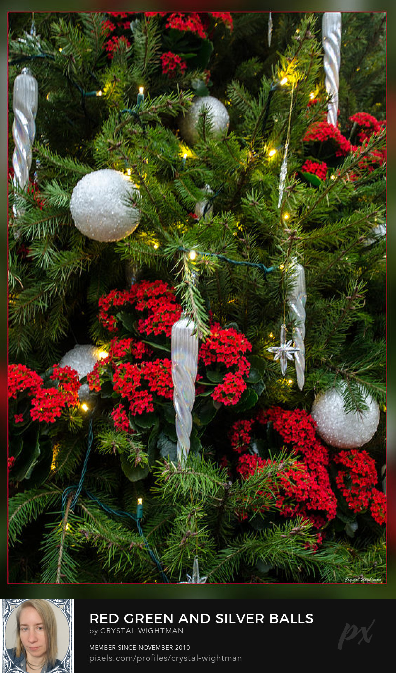 A Christmas tree decorated with red flowers and silver ball ornaments.