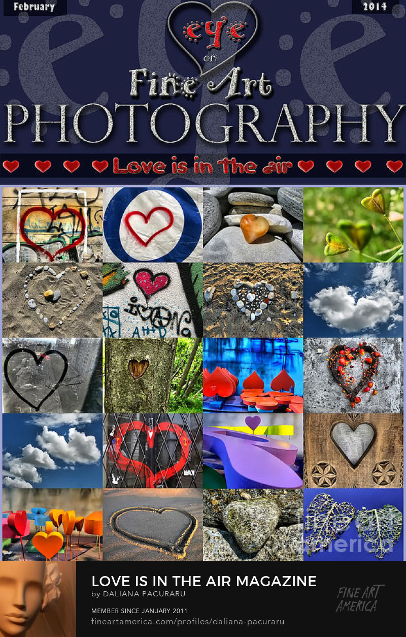 Love Is In The Air PHOTOGRAPHY and Cover design by Daliana Pacuraru