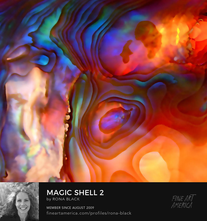 Magic Shell 2 � Rona Black