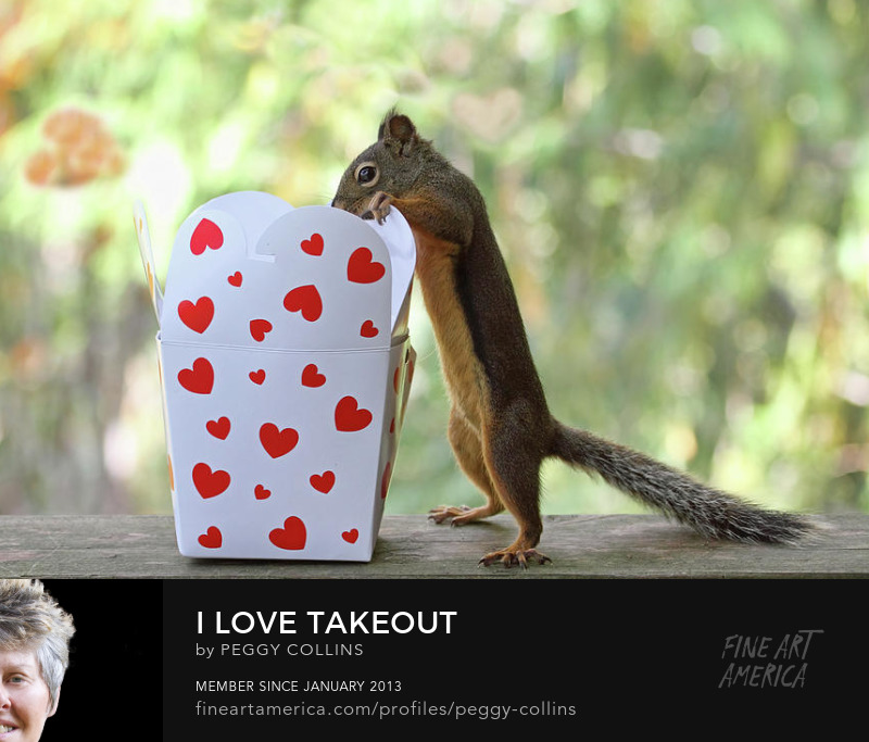 i love takeout by peggy collins