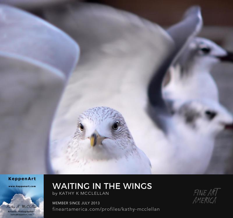 Waiting In The Wings by Kathy K. McClellan