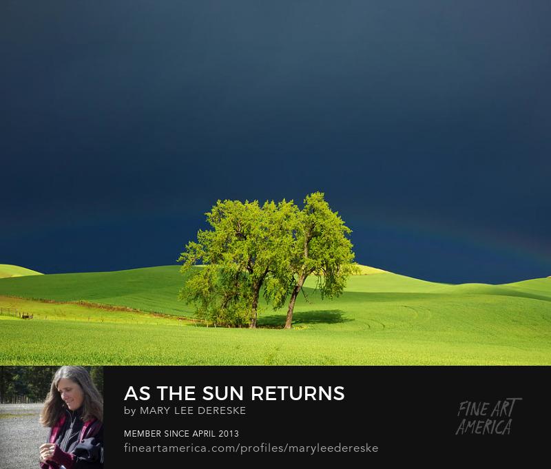 As the Sun Returns by Mary Lee Dereske