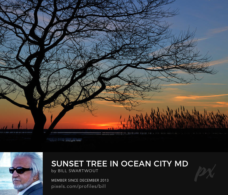 Ocean City Sunset Art Prints