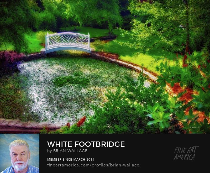 White Footbridge by Brian Wallace